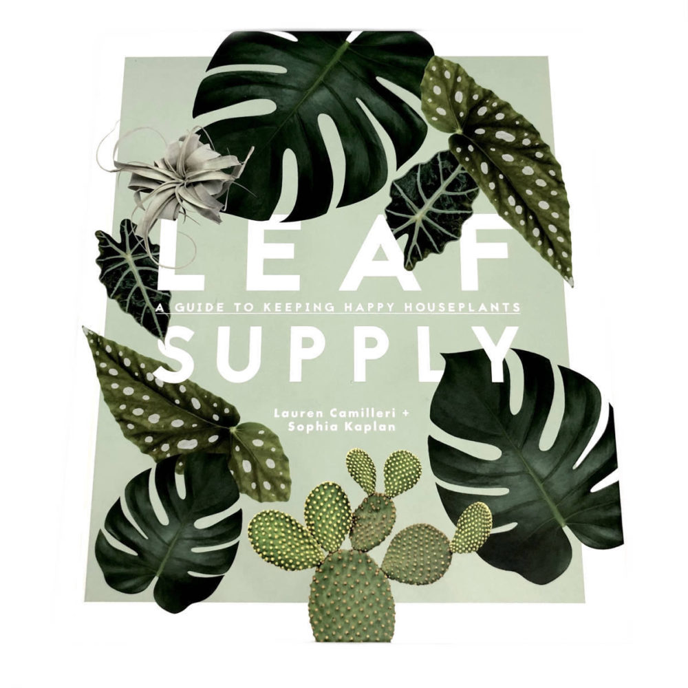 Leaf Supply