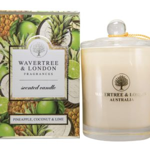 Pineapple Coconut and Lime Candle
