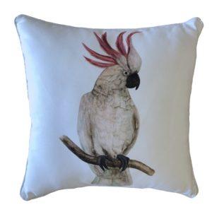 Hello Cocky Outdoor Cushion